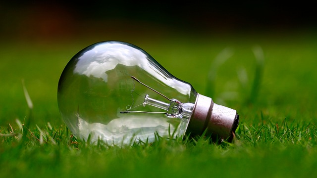 Green grass with lightbulb resting on it.